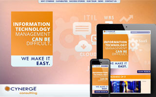 Cynerge Consulting Website