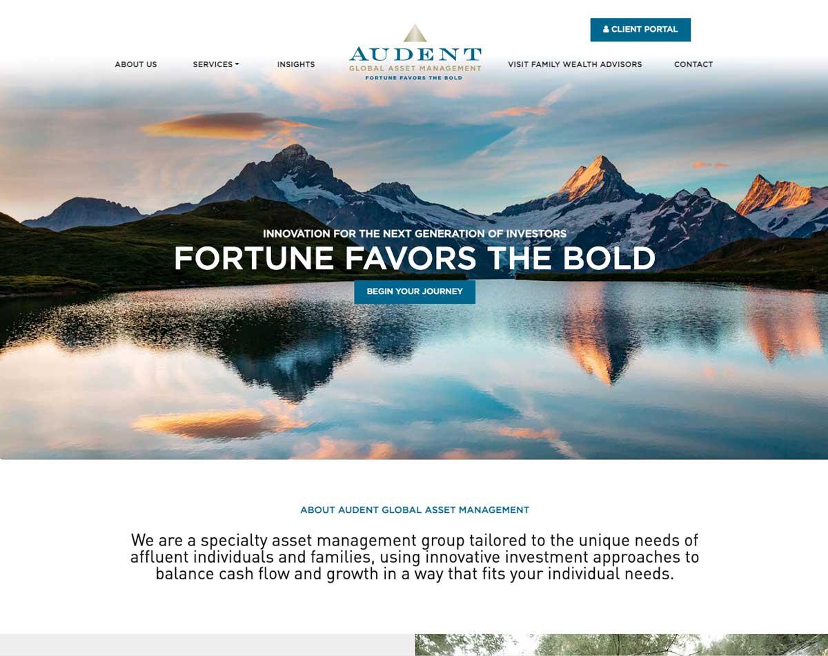 Audent Global Asset Management WordPress Website Theme