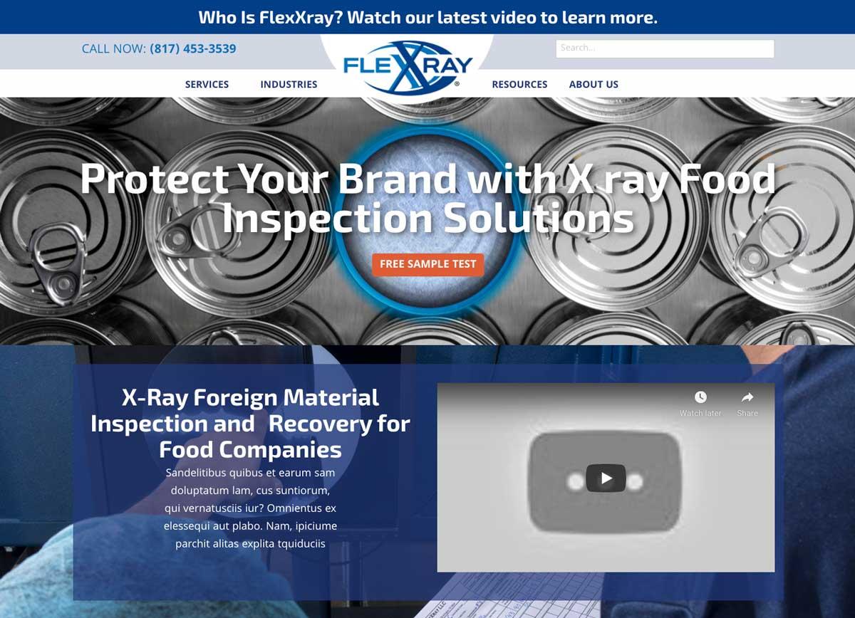 FlexXray WordPress Website Theme